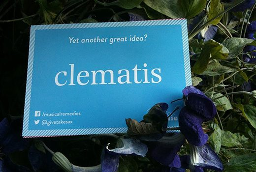 A card on an orchard reading: Yet another great idea? Clematis